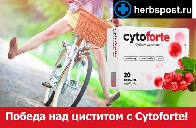 Cytoforte купить в аптеке