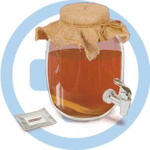 Чайный гриб для здоровья