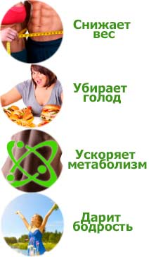 IQslim свойства