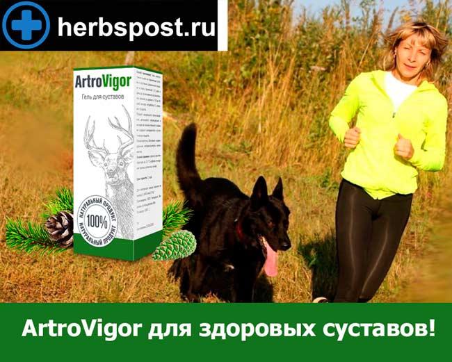 ArtroVigor купить в аптеке