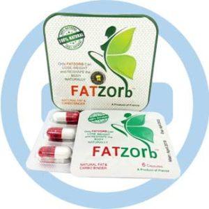 Fatzorb для похудения