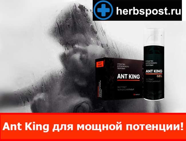 Ant King купить в аптеке